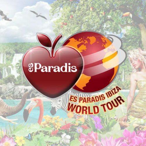 PARADIS-THUMB
